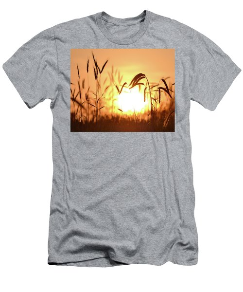 Sunset Rye IIi Men's T-Shirt (Athletic Fit)