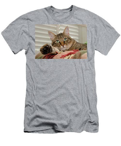 The Cat With Green Eyes Men's T-Shirt (Athletic Fit)