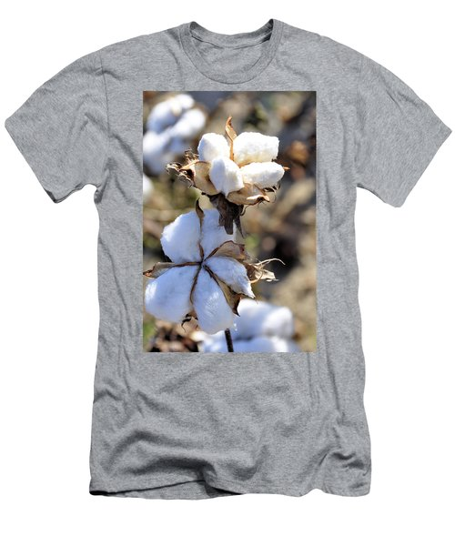The Cotton Is Ready Men's T-Shirt (Slim Fit) by Jan Amiss Photography