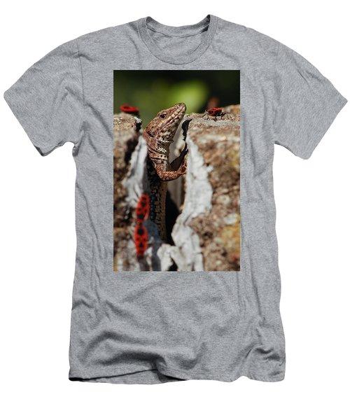 Men's T-Shirt (Athletic Fit) featuring the photograph the random Lizard  by Stwayne Keubrick