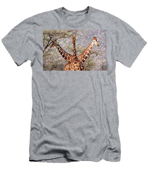 Three Headed Giraffe Men's T-Shirt (Slim Fit) by Tony Murtagh