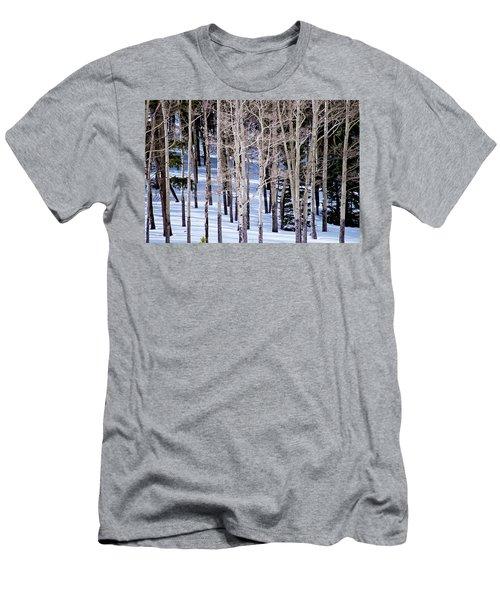 Winter Aspens Men's T-Shirt (Slim Fit) by Colleen Coccia