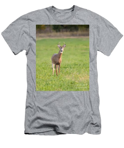 Men's T-Shirt (Slim Fit) featuring the photograph Young Buck by Art Whitton