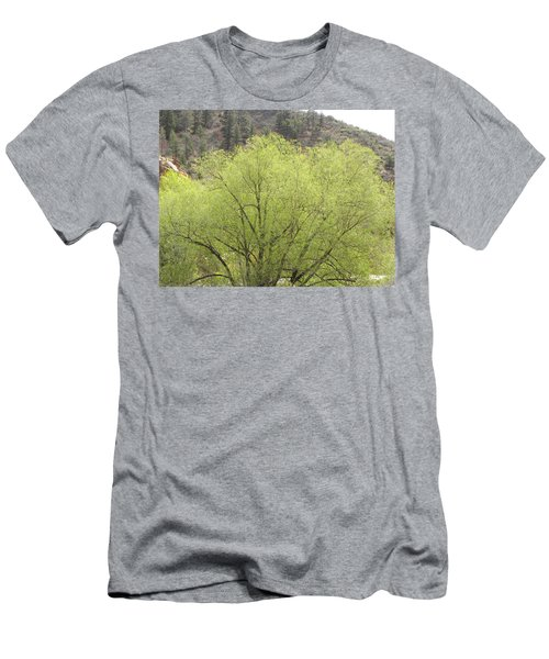Tree Ute Pass Hwy 24 Cos Co Men's T-Shirt (Athletic Fit)