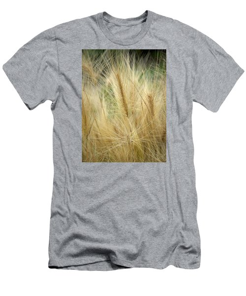 Foxtail Barley Men's T-Shirt (Slim Fit) by Jouko Lehto