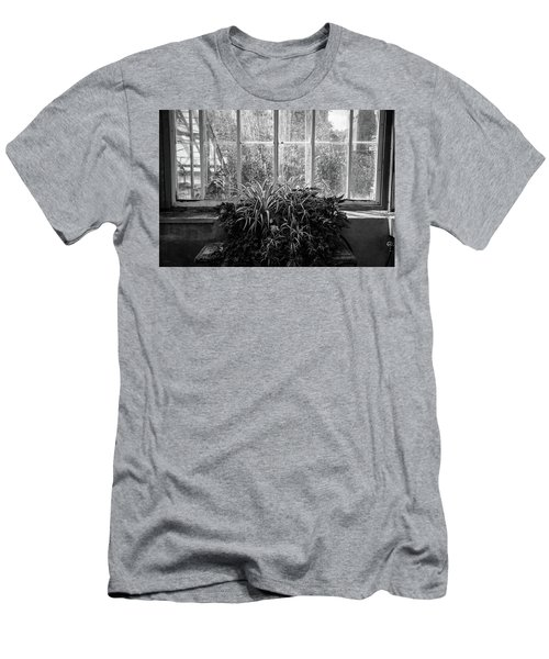 Allan Gardens Men's T-Shirt (Athletic Fit)