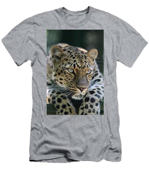 Amur Leopard #2 Men's T-Shirt (Athletic Fit)