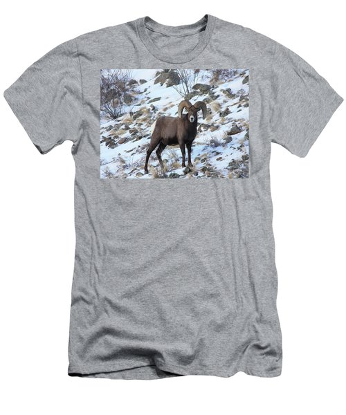 Bighorn7 Men's T-Shirt (Athletic Fit)
