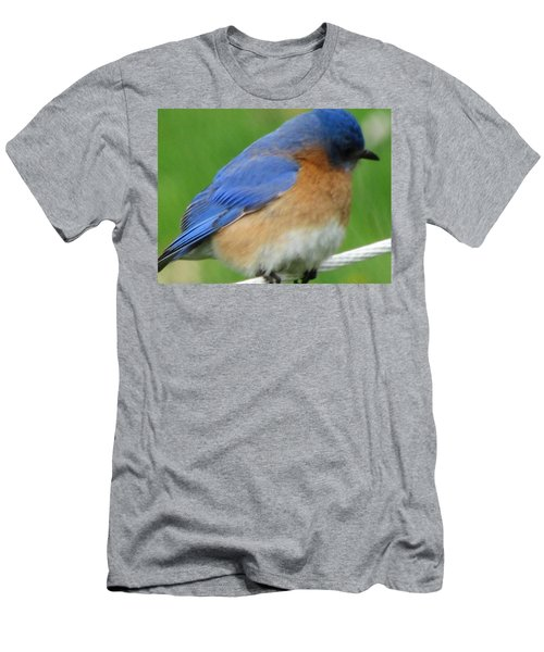 Men's T-Shirt (Slim Fit) featuring the painting Blue Bird by Betty Pieper
