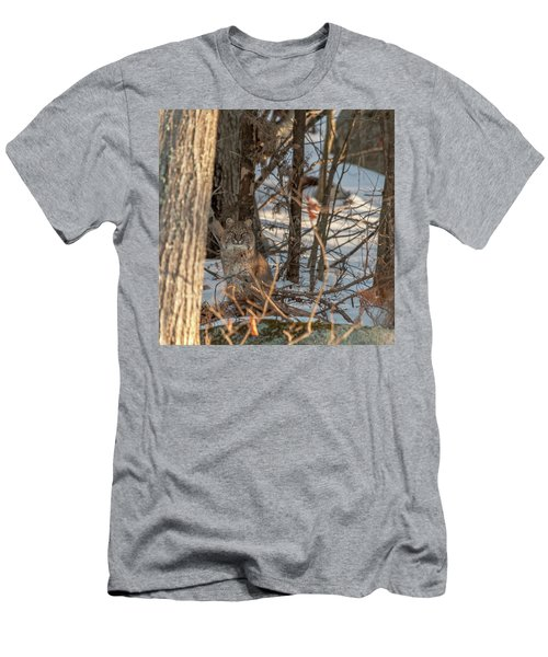 Men's T-Shirt (Athletic Fit) featuring the photograph Bobcat by Brenda Jacobs