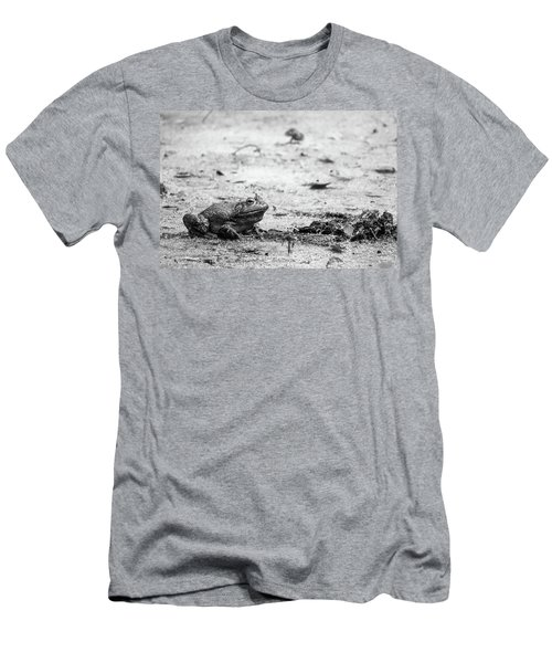 Bull Frog Men's T-Shirt (Athletic Fit)