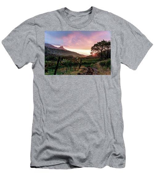 Colibri Sunrise Men's T-Shirt (Athletic Fit)