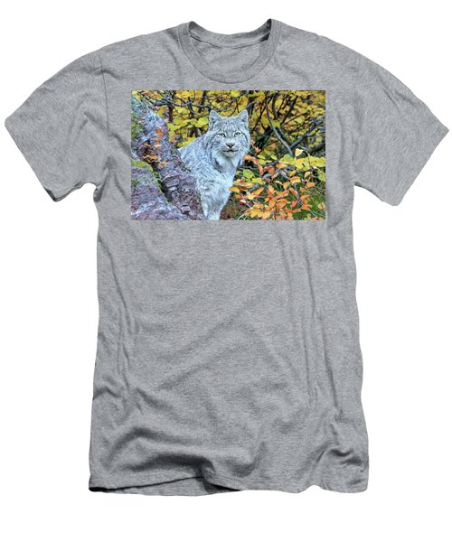 Canada Lynx Men's T-Shirt (Slim Fit) by Jack Bell