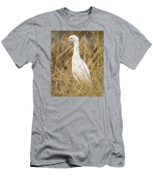 Men's T-Shirt (Slim Fit) featuring the photograph Cattle Egret by Doug Herr