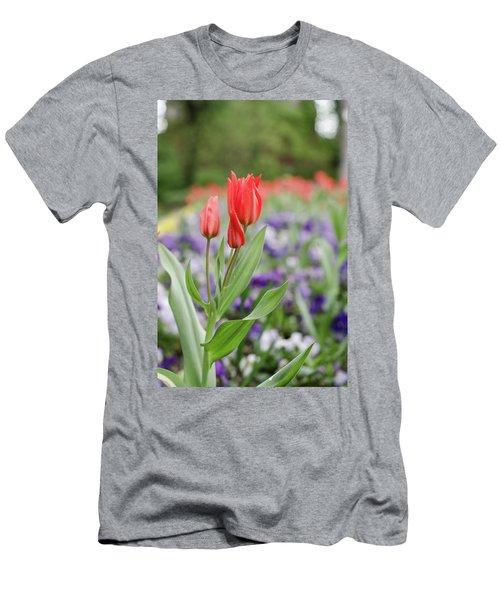 City Park Men's T-Shirt (Athletic Fit)