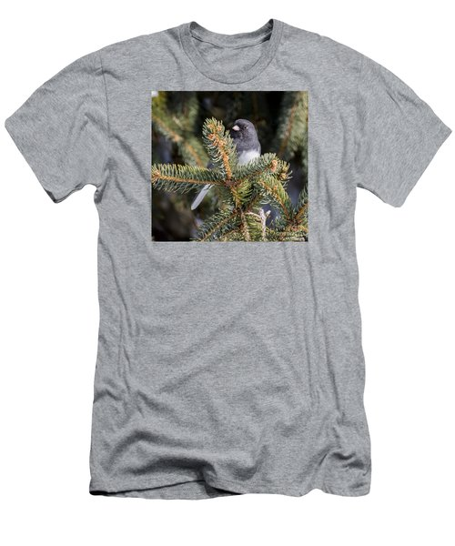 Dark-eyed Junco Men's T-Shirt (Slim Fit) by Ricky L Jones