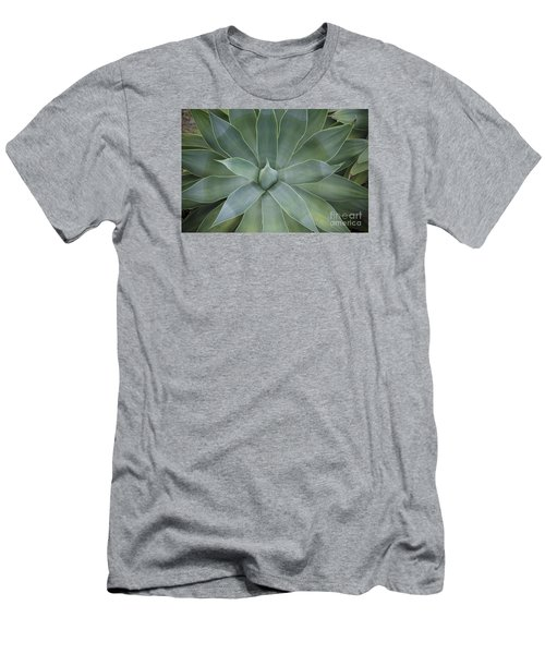 Detail Of An Agave Attenuata Men's T-Shirt (Athletic Fit)