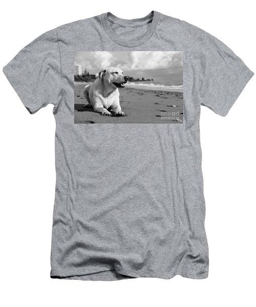 Dog - Monochrome 5  Men's T-Shirt (Athletic Fit)