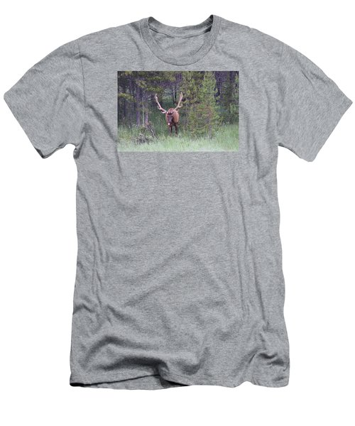 Men's T-Shirt (Athletic Fit) featuring the photograph Bull Elk Rocky Mountain Np Co by Margarethe Binkley