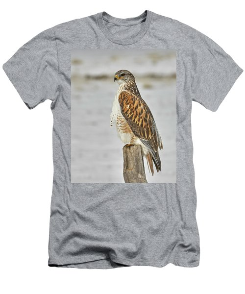 Ferruginous Hawk Men's T-Shirt (Slim Fit) by Doug Herr