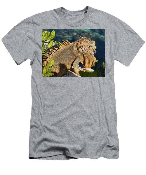 Giant Iguana Men's T-Shirt (Athletic Fit)