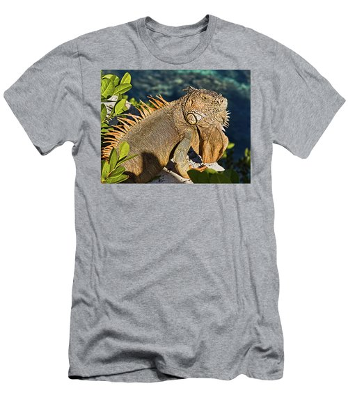 Giant Iguana Men's T-Shirt (Athletic Fit)