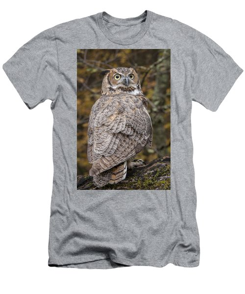 Great Horned Owl Men's T-Shirt (Slim Fit) by Tyson Smith