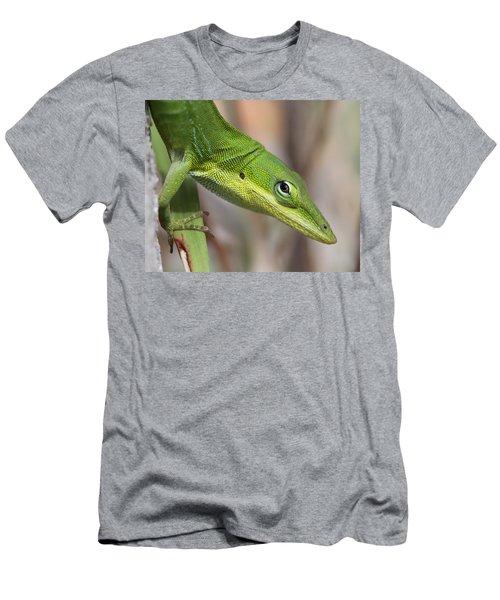 Green Beauty Men's T-Shirt (Athletic Fit)
