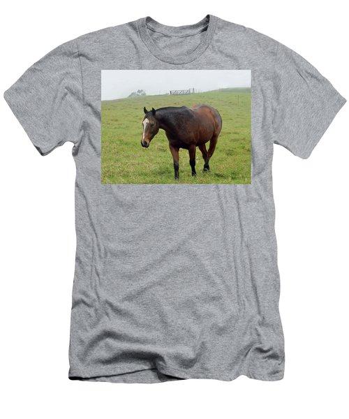 Horse In The Fog Men's T-Shirt (Slim Fit) by Pamela Walton