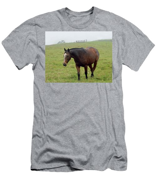 Horse In The Fog Men's T-Shirt (Athletic Fit)