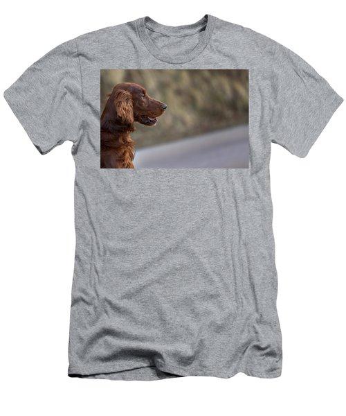 Irish Setter Men's T-Shirt (Athletic Fit)