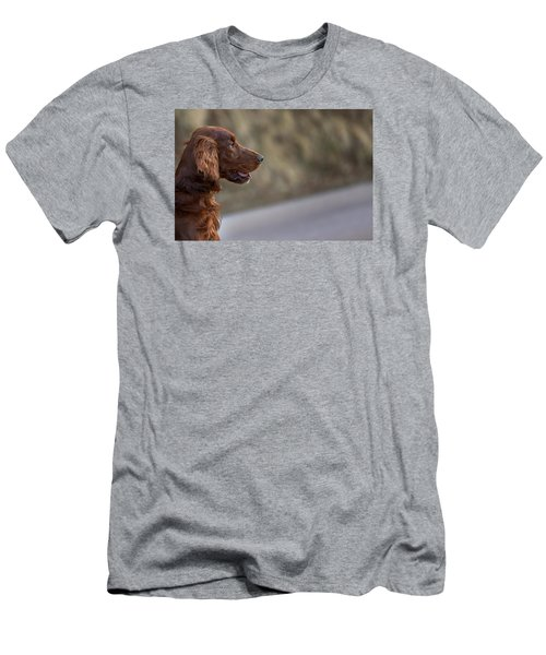 Irish Setter Men's T-Shirt (Athletic Fit)