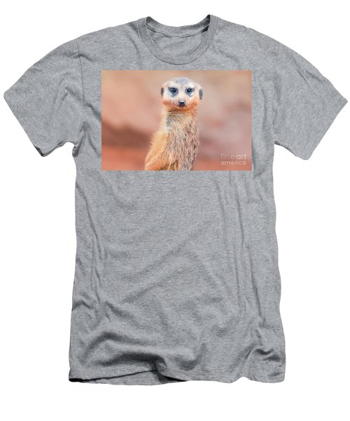 Meerkat Men's T-Shirt (Athletic Fit)
