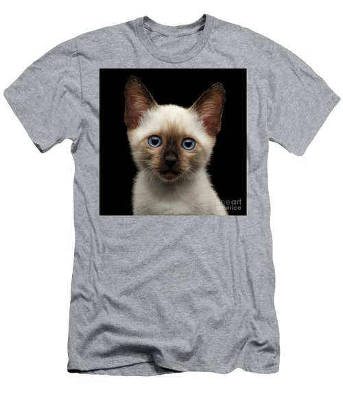 Mekong Bobtail Kitty With Blue Eyes On Isolated Black Background Men's T-Shirt (Slim Fit) by Sergey Taran