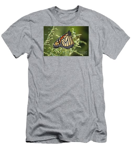 Monarch Men's T-Shirt (Athletic Fit)