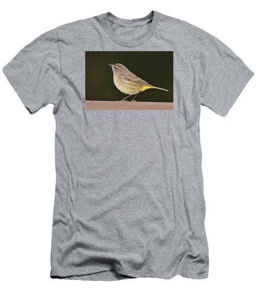 Palm Warbler Men's T-Shirt (Slim Fit) by Alan Lenk