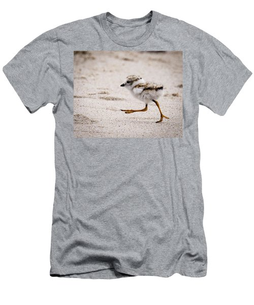 Piping Plover Chick Men's T-Shirt (Athletic Fit)