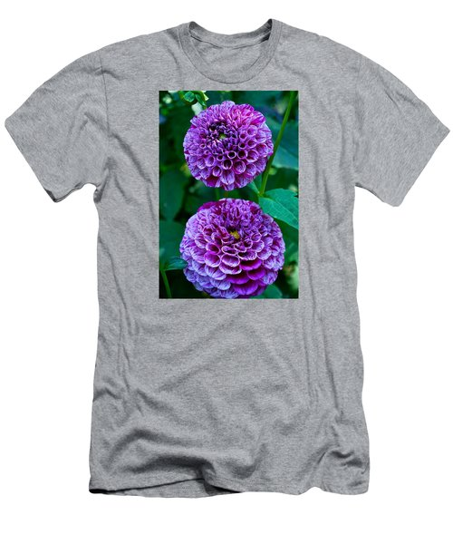 Purple Passion Dahlia  Men's T-Shirt (Athletic Fit)