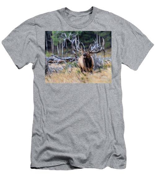 Raging Bull Men's T-Shirt (Athletic Fit)