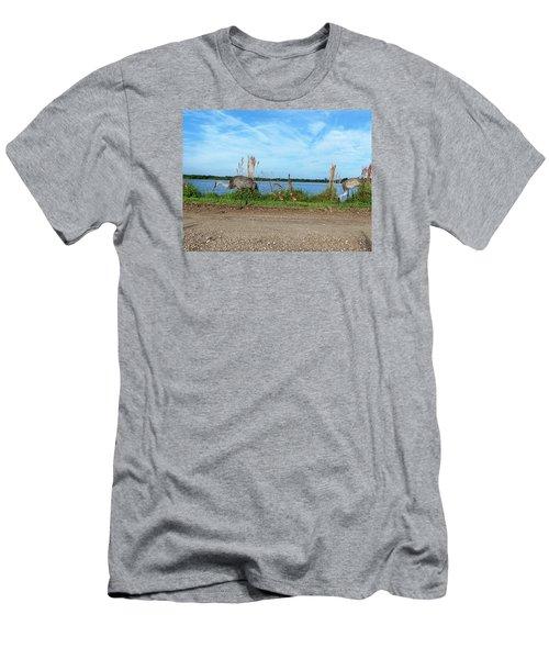 Sandhill Crane Family  Men's T-Shirt (Slim Fit) by Chris Mercer