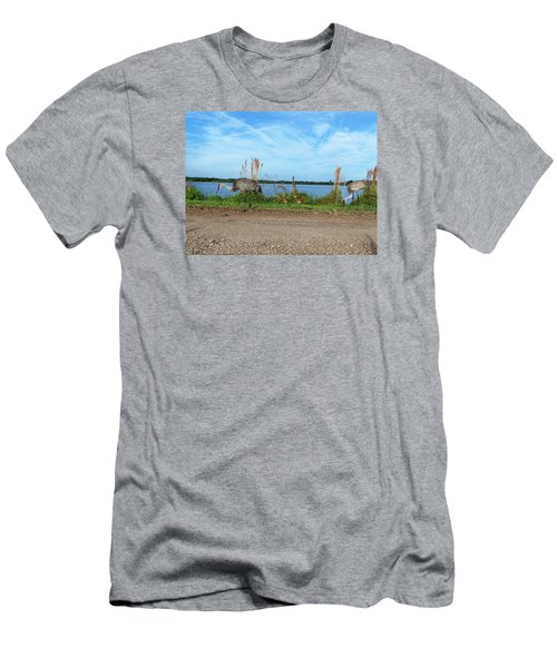Sandhill Crane Family  Men's T-Shirt (Athletic Fit)