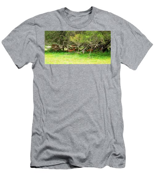 Shelter From The Sun Men's T-Shirt (Athletic Fit)