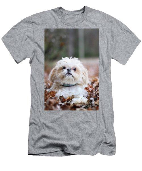 Shih Tzu Men's T-Shirt (Athletic Fit)