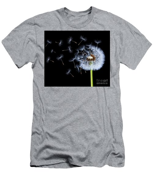 Men's T-Shirt (Slim Fit) featuring the photograph Silhouettes Of Dandelions by Bess Hamiti