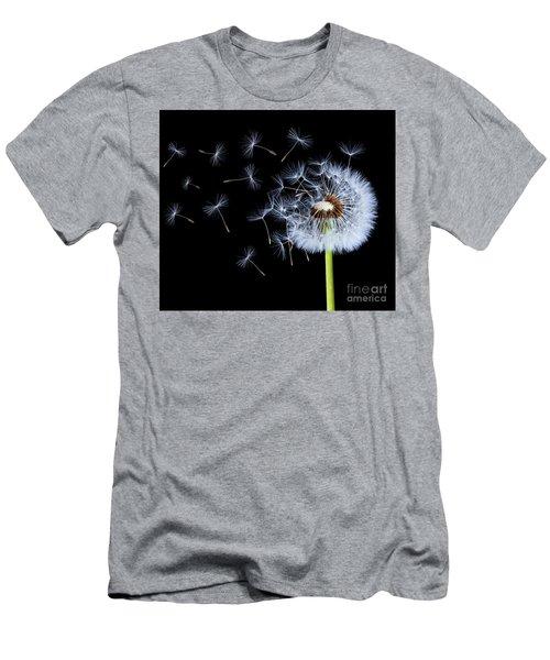 Silhouettes Of Dandelions Men's T-Shirt (Athletic Fit)