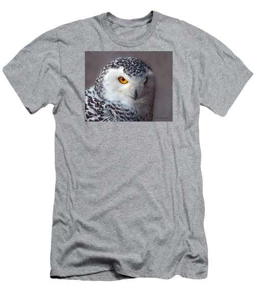 Snowy Owl Portrait Men's T-Shirt (Slim Fit) by CR  Courson