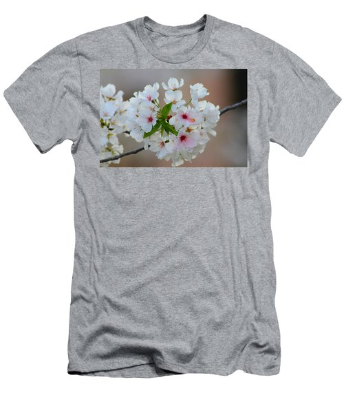 Springtime Bliss Men's T-Shirt (Athletic Fit)
