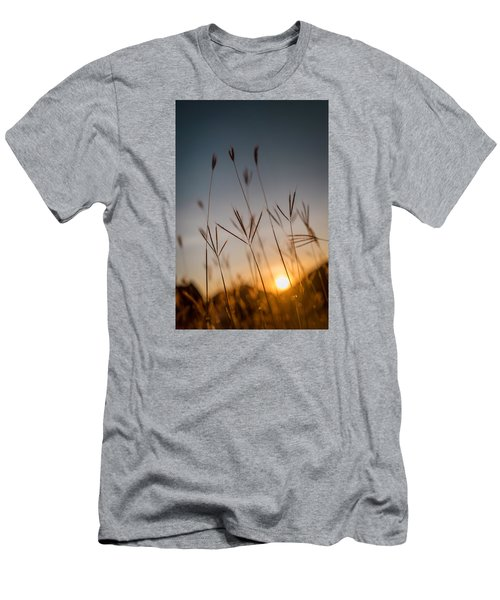 Sunset Grass Men's T-Shirt (Athletic Fit)
