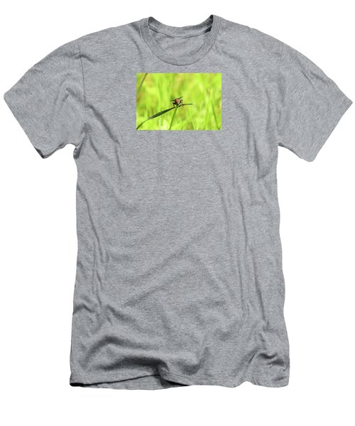 The Fly Men's T-Shirt (Slim Fit) by David Stasiak