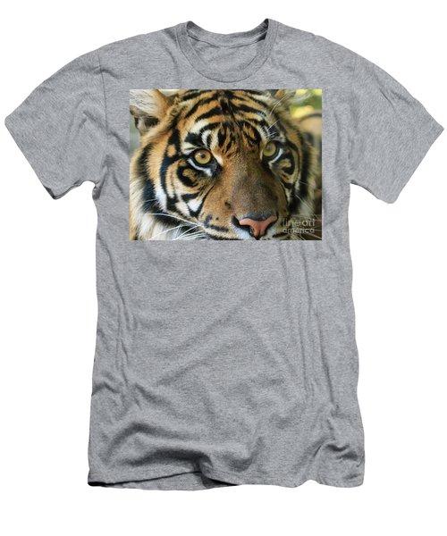 Tiger Men's T-Shirt (Slim Fit)